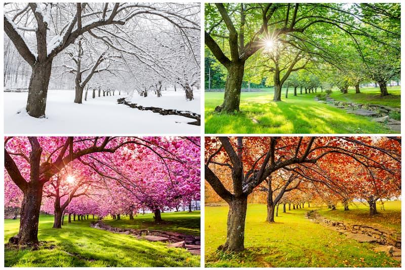 季節 ねらい 変わる